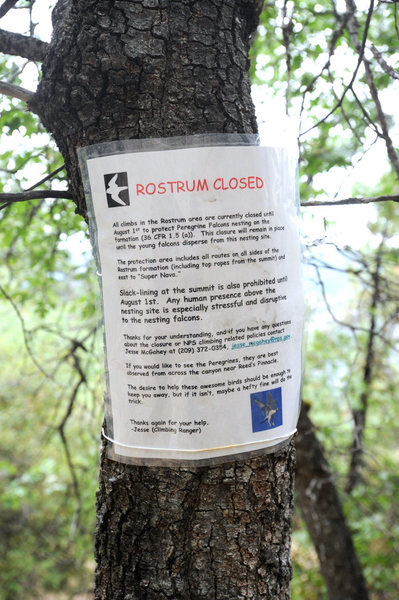 Check with the park about the seasonal raptor closure on the Rostrum.