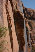 Rock Climbing Photo: moab rocks