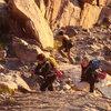 Fellow Climbers
