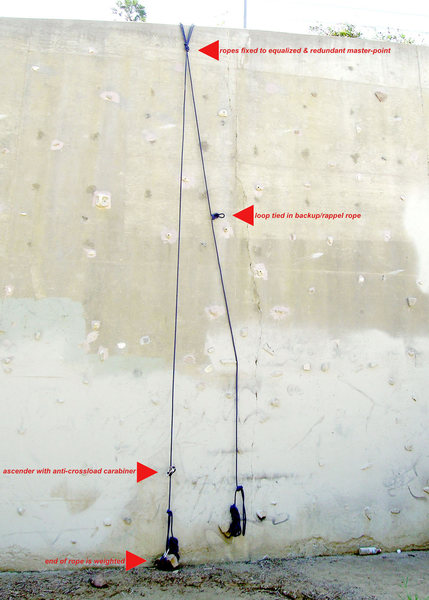 Setup for top-rope soloing with the Petzl Basic ascender.