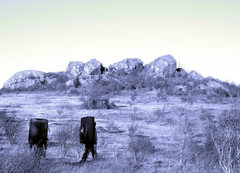Rock Climbing Photo: Walking to the first cluster at the Highland Bould...