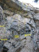Rock Climbing Photo: Bingo Baby Wall