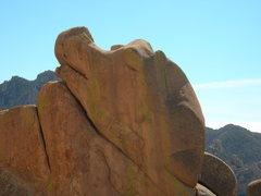 Rock Climbing Photo: A sleepy dragon???