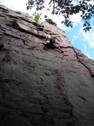 Rock Climbing Photo: Eric P. where the course work starts heat'n up at ...