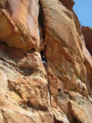 Rock Climbing Photo: Bill Ohran on the FA of pitch 6. Bolts were added ...