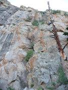 Rock Climbing Photo: Vegetated terrain near the left edge of the buttre...