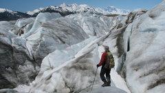 Rock Climbing Photo: Bill on the Brady Icefield, looking towards the Fa...