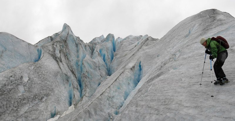 On Reid Glacier