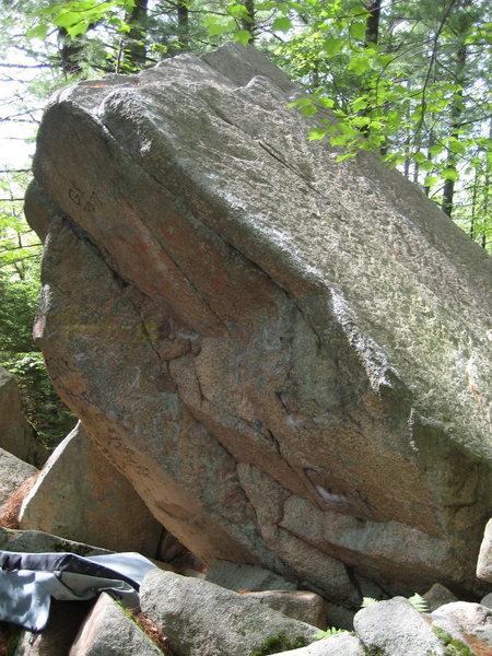 monico steep