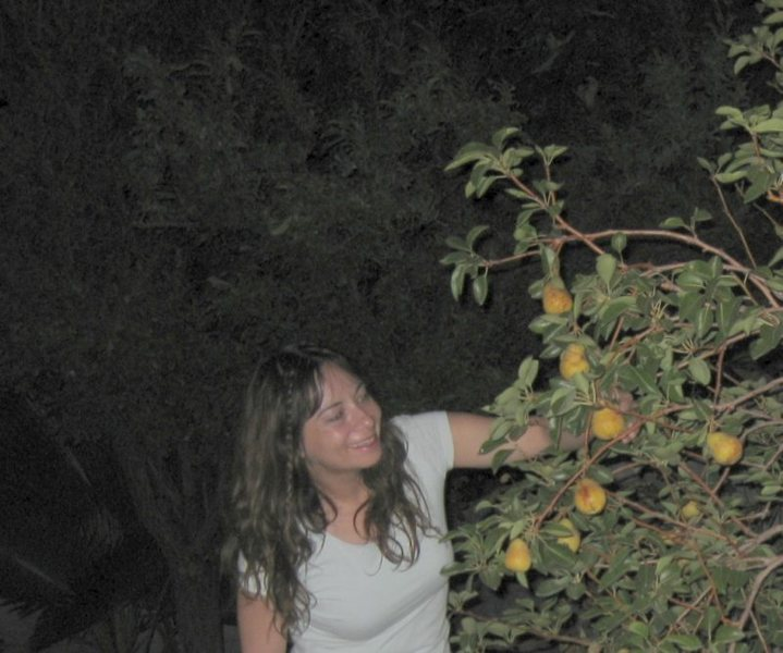 Night time pear pickin' time! This is the last remaining fruit on our trees this season. <br> <br> <br> Taken 9/2/09<br> <br> <br> <br> <br>