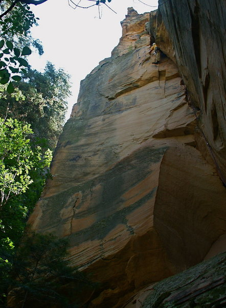 "Rock Climbing Photo: Scott near the top during FA of ""Moki Dogway&..."