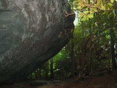 Rock Climbing Photo: Olympus Boulder, Picnic Area.