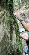 "Rock Climbing Photo: Aaron Parlier on the crimps on ""Blue Jet&quot..."
