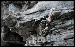 Rock Climbing Photo: will anglin dynoing on apollo reed