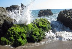 Rock Climbing Photo: I could watch waves crashing all day long.  Point ...