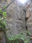 Rock Climbing Photo: Practice wall in the middle (with rope), multiple ...
