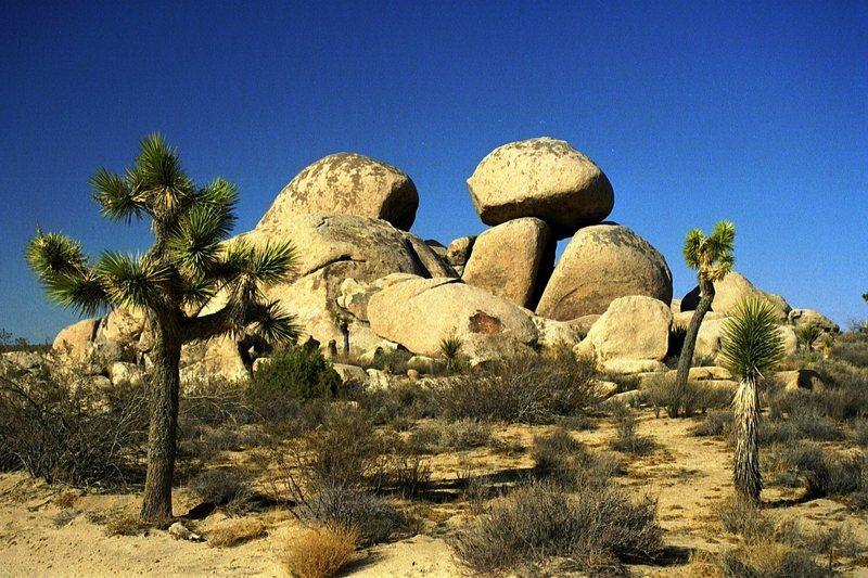 Same pile of rocks, Geology Road in 2001 or so.