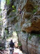 Rock Climbing Photo: Huck leading Darwin Loves You