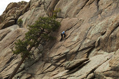 """Rock Climbing Photo: Kristen on the lower slabs of """"Mama Jugs&quot..."""