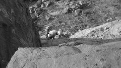Rock Climbing Photo: Donovan on TR