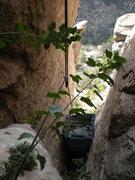 Rock Climbing Photo: the potty