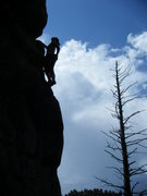 Rock Climbing Photo: Tara scoping out the final sequence on Wheel of Fo...