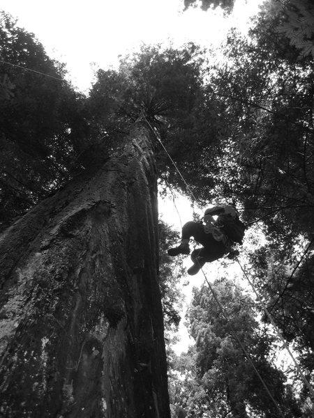 Rock Climbing Photo: chris