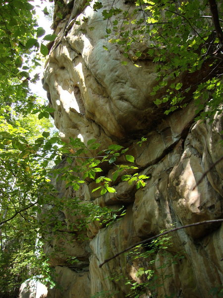 Rock Climbing Photo: climb up to the very bright spot...