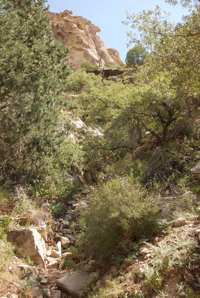View of the Weeping Wall (short black formation) from the right hand pullout, looking up the gully.<br> <br> Large formation up top is Super Secret, so I don't want to Show or Tell too much about the Area...