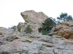 Rock Climbing Photo: Ribbit?