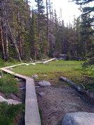 Rock Climbing Photo: RMNP trails!!