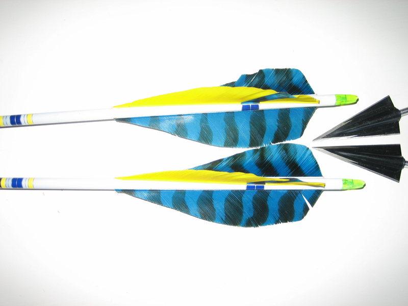 Custom arrow fletching and 145gr Stros broadheads.