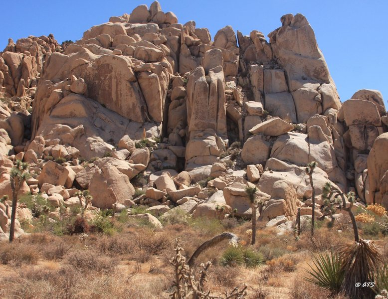 Rock Climbing Photo: Box Canyon Area