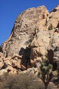 Rock Climbing Photo: Easy Buttress
