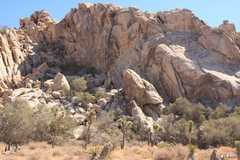 Rock Climbing Photo: The Shady Spot