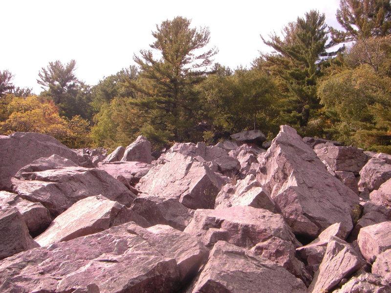 Rock Climbing Photo: Boulders in the Slant boulder field.  A few good p...