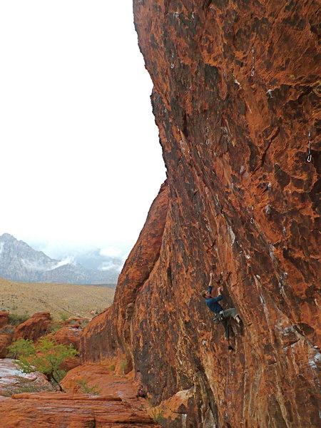 Rock Climbing Photo: Mike on Minstrel, November 2008