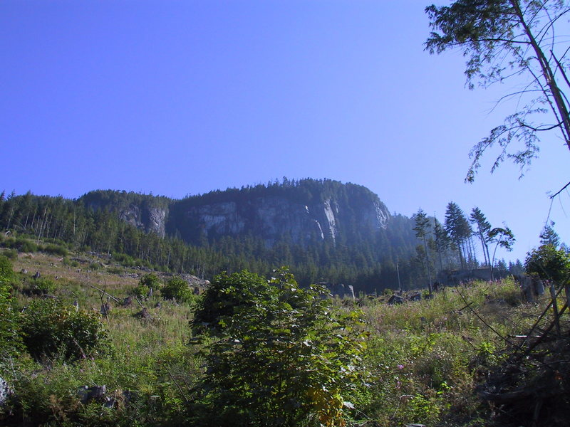 View of the wall from low in the clear cut. The prominent sunny buttress near the center is home to several outstanding routes, including Squeaky (12b), Hanna Deanna (11d), and Flow (11a).