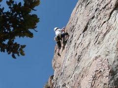 Rock Climbing Photo: nicole at the crux