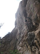 Rock Climbing Photo: David Bloom on Easy Skunkin'. Gobiphobia and Cactu...