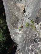 Rock Climbing Photo: Looking down the hardest 5.6 in the world (very fu...