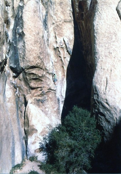 Rock Climbing Photo: 3/17/90