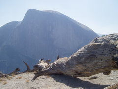 Rock Climbing Photo: Half Dome from North Dome