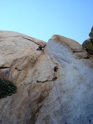 Rock Climbing Photo: Darren leading 1st pitch (10-) of Wailing Banshees...