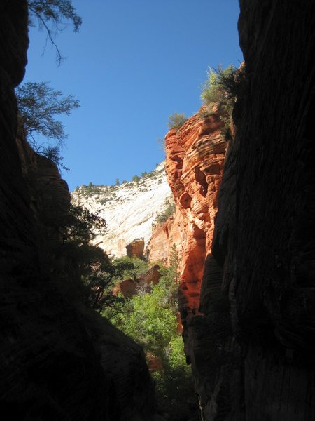 Exiting the narrow corridor of Middle Echo Canyon. The sun felt nice after all the cold swims.<br> <br> 9/23/09 in Zion, Utah.