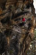 "Rock Climbing Photo: Luke Childers crushing ""Ken T'anks for the on..."