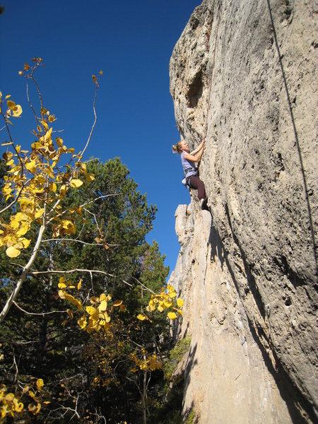 Rock Climbing Photo: Working up the steep headwall.