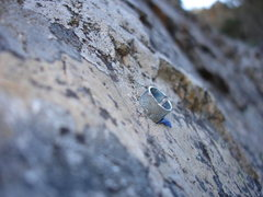 Rock Climbing Photo: From the route just to the left of the tree in the...