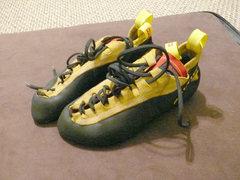 Rock Climbing Photo: Saltic Devil Climbing shoes