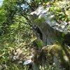 The slightly overhanging Cereal Boulder.